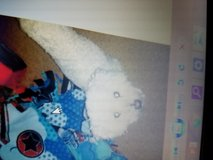 Missing Dog. Poodle mix male in Fort Polk, Louisiana