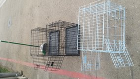 Metal Dog Kennels in Camp Pendleton, California