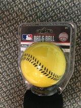 Bat and Ball in Naperville, Illinois