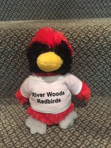 River Woods Elementary School Mascot in Naperville, Illinois