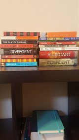 Young Adult Novels in Fort Polk, Louisiana