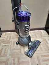 Dyson Animal in Huntington Beach, California