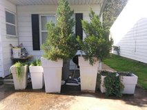 pots and plants in Lawton, Oklahoma