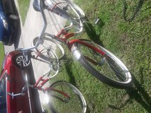 Bikes in Tampa, Florida