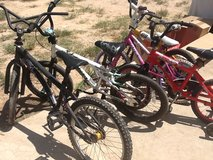 5 Bikes in Kingwood, Texas