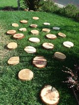 22 natural cut wood slices in Fairfield, California