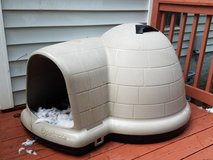 extra large like new igloo, igloo heating pad, raised dog storage and water and food bowls in Camp Lejeune, North Carolina