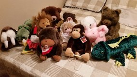 Stuff Animals in Lawton, Oklahoma
