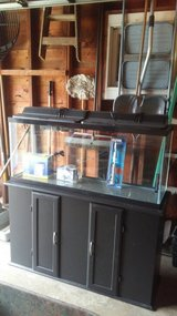 Fish tank and stand in Chicago, Illinois