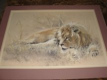 """LARGE LION """"CONTENTED"""" PRINT BY ROBERT RUSSELL 1979 in Camp Lejeune, North Carolina"""