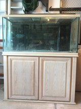 """""""Oceanic Systems""""salt water 120 gallon fish tank(aquarium)with filtration system and light in Westmont, Illinois"""