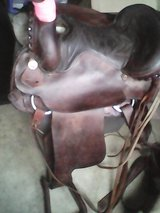 Horse Roping Saddle in Lancaster, Pennsylvania
