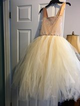 Tutu dress in Aurora, Illinois