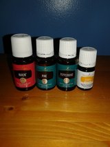 Oils from young living in Fort Drum, New York
