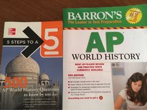 AP World History study books in Stuttgart, GE