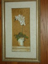 31x19-1/2 orchids in vase in Naperville, Illinois