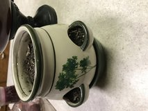 Planter for different herbs up to 5 different ones in Fort Leonard Wood, Missouri