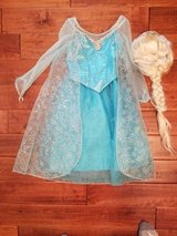 Elsa Costume with Wig in bookoo, US