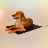 DOG MAT HEATED in Sandwich, Illinois