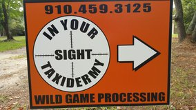 In Your Sight Taxidermy/Wild Game Processing/Deer Processing in Camp Lejeune, North Carolina
