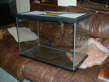 Reptile Terrarium & screen cover in Orland Park, Illinois