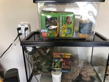 Reptiles tank and carry case in Fort Hood, Texas