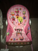 Owl baby chair in Fort Leonard Wood, Missouri