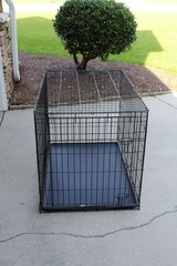 Dog Crate in Wilmington, North Carolina