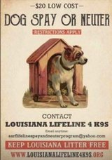 get your pets fixed for cheap email this email below if interested for more details in DeRidder, Louisiana