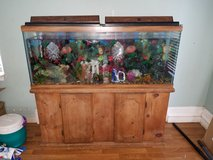 65gal fish tank with stand in Perry, Georgia