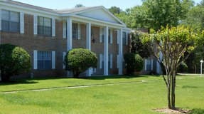 Beautiful Large 3/2 ALL BILLS PAID 1,5000 sq foot apartment Seniors 50+ in The Woodlands, Texas