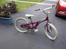 Girls 21 Inch Schwinn Bicycle Needs New Tires in Aurora, Illinois