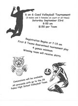 CO-ED ADULT VOLLEYBALL TEAMS in 29 Palms, California