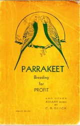 Parrakett breading for profit in Temecula, California
