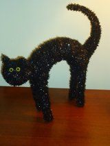 blk cat 16x16 in Chicago, Illinois