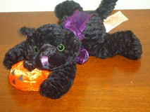 plush blk cat w/pumpkin in Glendale Heights, Illinois