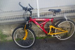 Lost Mountain bike in Okinawa, Japan