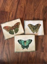 Butterfly Artworks in Alamogordo, New Mexico