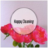 Cleaning Service in Wiesbaden, GE