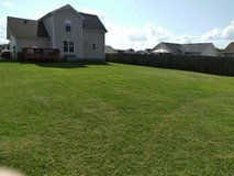 Lawn Care in Fort Campbell, Kentucky