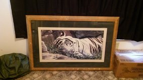 tiger picture in Fort Knox, Kentucky