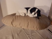 Life-Like dog on Pillow in Naperville, Illinois