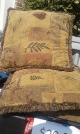 Pillows w/ Nature Pattern (4)f in Sugar Grove, Illinois