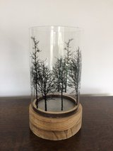 Forest trees tea light in Lakenheath, UK