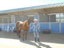 Blue Barn Ranch Boards Horses + in 29 Palms, California