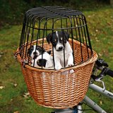 Bicycle basket for puppy or items in Alamogordo, New Mexico