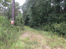 25 ACRES Wooded Land in Richlands in Camp Lejeune, North Carolina