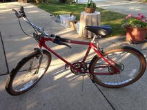 Free Spirit 10 Speed Bike in Wheaton, Illinois