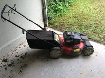 Lawn Mower and Leaf Blower in Spangdahlem, Germany