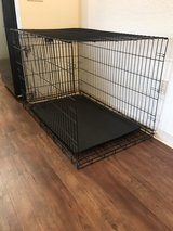 large pet Crate in Kissimmee, Florida